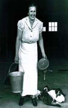 Farm Lady, Milk Stool, Milk Bucket & Cats