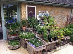 Daylesford Organic Farm shop