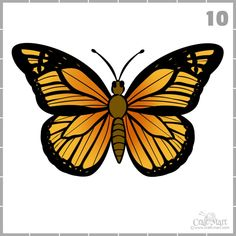 butterfly draw easy drawing step monarch drawings mart craft fast colour simple flying learn wings some sketches fun insects facts