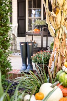 Cozy traditional fall porch decorated with corn stalks, orange, green and white pumpkins, orange mums, Traditional Porch, Pumpkin Topiary, Jar Chandelier, Magnolia Wreath, Weird Shapes, White Pumpkins, Autumn Inspiration, Porch Decorating, Fall Crafts