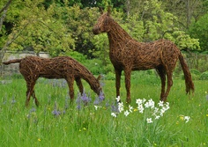 Horse and foal. An exhibition of willow sculptures by Emma Stothard at Nunnington Hall, North Yorkshire