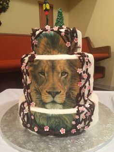 The Lion, the witch and the wardrobe cake. Aslan/spring side and a winter side