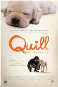 Quill: The Life of a Guide Dog Movie Review | The Movies Center
