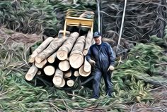 Hauling Logs for Cabin