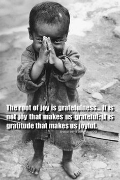 """The root of Joy is Gratefulness... It is not joy that makes us Grateful; It is Gratitude that makes us Joyful.""  ~ Brother David Steindl-Rast  Click The Link Below and Listen To  'GRATITUDE' In This Short Audio:  http://www.Thanks2net.com/Gratitude.mp3  It's Not Just Another Day!  VISIT...http://www.Thanks2net.com/ For More"