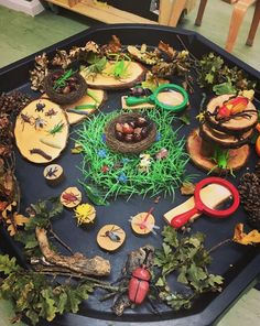 An inviting mini-beast bug hunt tuff tray here by @thelittlelearningtree