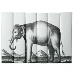Elephant set from Juniper Books