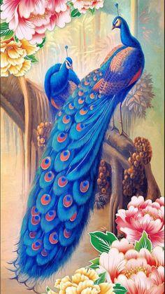 peacock-and-peony-flower-photo-wallpaper.jpg peacock-and-peony-flower-photo-wallpaper.