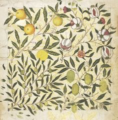Design for a wallpaper with olives, lemons and pomegranates, by William Morris (1834-96). Watercolour and bodycolour. London, England, 1862.