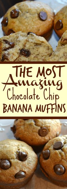 A dessert recipe that your family will make disappear fast, these chocolate chip banana muffins are amazing!