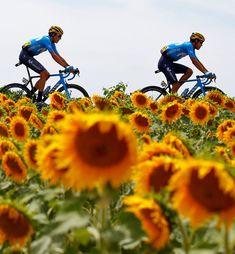 TDF2019  Luca Bettini / BettiniPhoto Pro Cycling, Cycling Outfit, Bicycle, Racing, Tours, Biking, France, Italia, Running