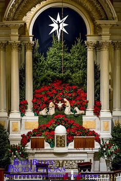 Church Christmas Decorations Ideas and Images – Christmas Celebration – All about Christmas - Christmas Pictures Church Christmas Decorations, Christmas Flowers, Altar Decorations, Christmas Nativity, All Things Christmas, Holiday Decor, Christmas Christmas, Xmas, Altar Flowers