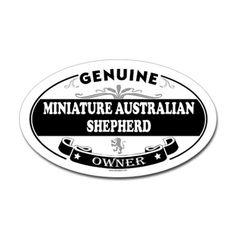 Mini-Aussie's Rule!!!