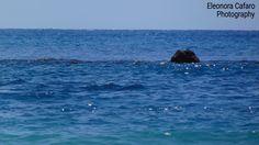 Dove il mare luccica...