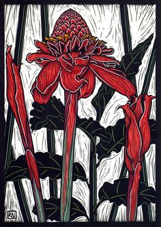 Linocuts by artist Rachel Newling of exotic flowers: Torch ginger,  Frangipani, Hibiscus, Oriental Lily, Bougainvillea, Arum Lily, Columbines,  Poppy, Sunflower, Camelia, Bauhinia, Peony rose, Echinacea flower & iris.  Linocuts are for sale as limited edition prints
