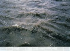 MoMA   The Collection   Roni Horn. Still Water (The River Thames, for Example). 1999