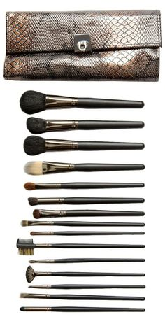 Crown Brush Professional 15-Piece Set with Designer Bronze Case: SALE & more colors!