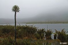 Parque Nacional Natural de Chingaza
