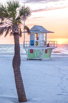 Cotton candy skies in Clearwater, Florida Cotton Candy Sky, Clearwater Florida, City, Beach, Plants, Beautiful, The Beach, Cities, Beaches