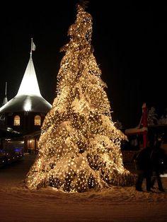 Christmas tree at Santa Claus Village, Rovaniemi, Finland See more at http://blog.blackboxs.ru/category/christmas/