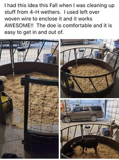 Kidding pen made with an old hay ring Horse Barns, Horse Tack, Horses, Cattle Farming, Livestock, Goat Ideas, Goat Shelter, Goat Pen, Show Goats