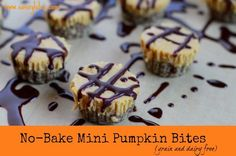 No-Bake Mini Pumpkin Bites (grain and dairy free)/ savorylotus.com