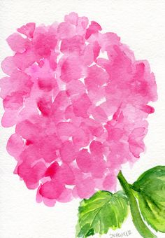 Pink Hydrangeas watercolors paintings original, hydrangea floral art, pink hydrangea original watercolor painting, hydrangea decor by SharonFosterArt on Etsy