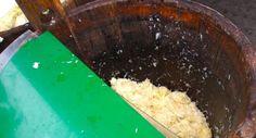 """Kiseli kupus - glavna zimska salata  Kupus se nariba na veliku ribež, priredi drveno bure """"kupušnjara i stavlja se red sitnog kupusa, red glavica s iskruženm korijenom okrenutim gore, redom se slaže i soli i gazi do gore, dok ne izbije pjena. Zatim se pokrije platnom, pritisne ,,danama"""", daščicama, stavi kamen i ostavi da izradi"""