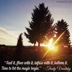 'Feel it, flow with it, infuse with it, believe it. Time to let the magic begin.' - Trudy Vesotsky
