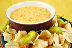 Chile Con Queso Dip http://bakerette.com/chile-con-queso/