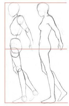 Learn to draw a human body, clothes, anime and coloring - . - Learn to draw a human body, clothes, anime and coloring – Source by - The Human Body, Human Head, Figure Drawing Tutorial, Human Figure Drawing, Human Body Drawing, Learn Drawing, Anatomy Drawing, Manga Drawing, Drawing Hair