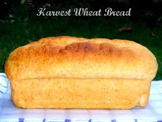 AMBROSIA: Harvest Wheat Bread healthy whole wheat