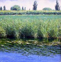 Reedy Water by M. Salt Open Art, Art Exhibitions, Mountains, Gallery, Water, Artist, Artwork, Centre, Salt