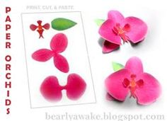 paper orchid template - Bing Images