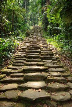 Steps to Ciudad Perdida