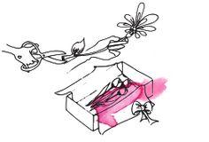 Blumen online bestellen | BLOOMY DAYS