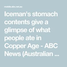 Iceman's stomach contents give a glimpse of what people ate in Copper Age - ABC News (Australian Broadcasting Corporation)