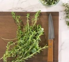 Growingfresh herbsis one of the easiest and rewarding gardening endeavors. However, if you can't cook with those herbs fast enough before they've lost their freshness, try this method fo…