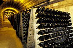 Champagne Region in France to tour the vineyards and wine cellars of Moet&Chandon and Castellane  <3