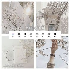 camera effects,photo filters,camera settings,photo editing Vsco Photography, Photography Filters, Photography Editing, Instagram Photo Editing, Photo Editing Vsco, Fotografia Vsco, Vsco Hacks, Best Vsco Filters, Aesthetic Filter