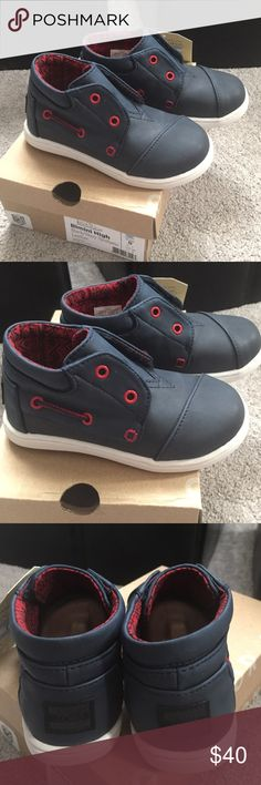 Toddler Toms Bimini High Top in Black/Navy Toddler size 8. Perfect for a boy or girl. Brand new in box. TOMS Shoes Sneakers