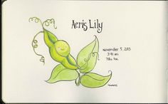 "Ink and watercolour working composite, birth announcement for client ""Sweet Pea"" © 2013 Tamara David"