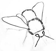Step by step bumblebee drawing