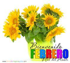 Bienvenido-Febrero-Mes-del-Amor-