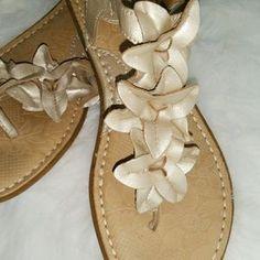 Born Shoes - B.O.C Born Beige Flower Sandles