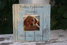 #dogsofinstagram #dogs #dogstagram #dogoftheday #doggy #doglife #doglove #dogofinstagram #doglover #instadog #ilovemydog #rescuedogs #adoptapet