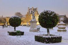 .Jardin des Tulieres