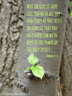 Hope Quote  ~ Beautiful nature photo with Romans 15:13 Scripture :: May the God of all Hope fill you with all JOY.... More hopeful inspiration waiting for you at AnExtraordinaryDay.net
