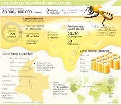 Las fumigaciones masivas ponen en riesgo la producción nacional de miel