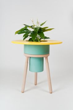 A planter and a table! I just love it!
